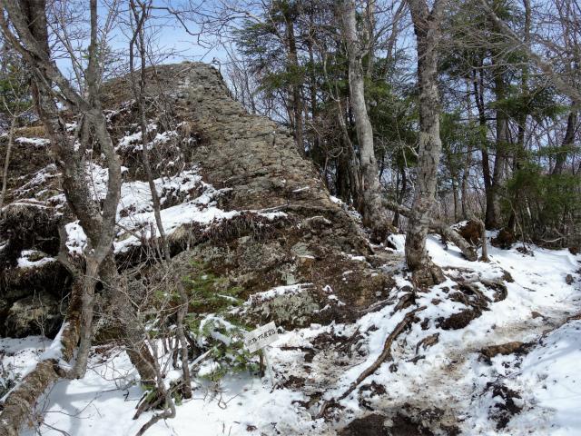 毛無山(不動の滝コース)登山口コースガイド 稜線分岐の岩の展望台【登山口ナビ】