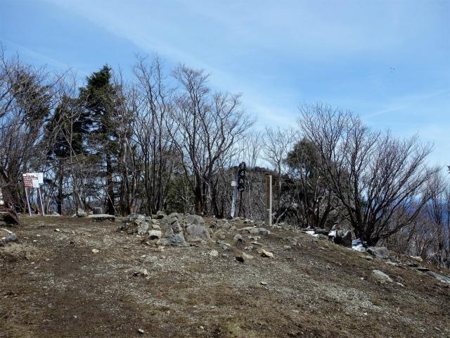 毛無山(不動の滝コース)登山口コースガイド 山頂【登山口ナビ】