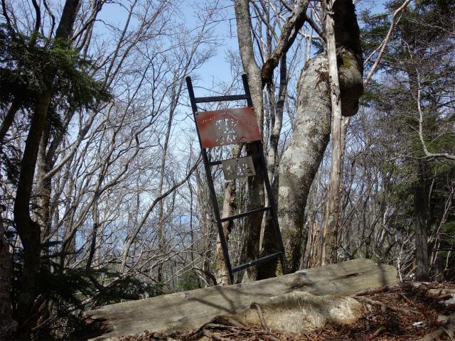 毛無山(不動の滝コース)登山口コースガイド 大見岳山頂標【登山口ナビ】