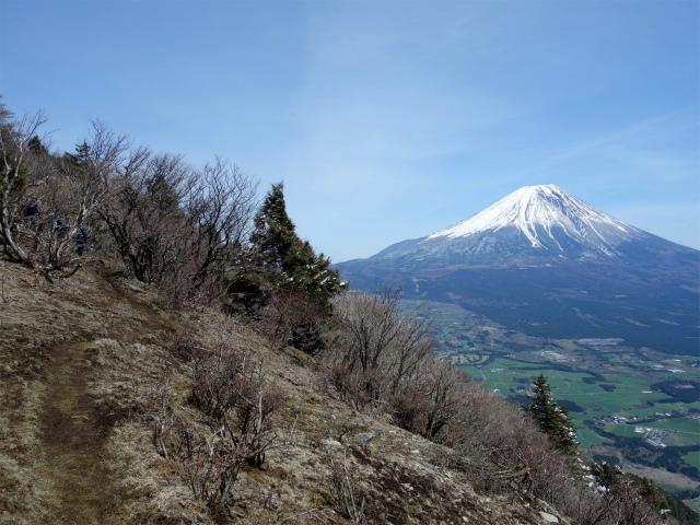 毛無山(不動の滝コース)登山口コースガイド 稜線の登山道【登山口ナビ】