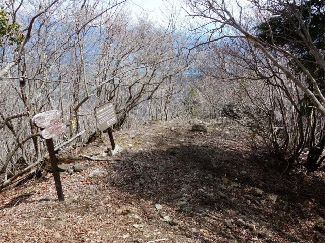 毛無山(地蔵峠コース)登山口コースガイド 展望台【登山口ナビ】