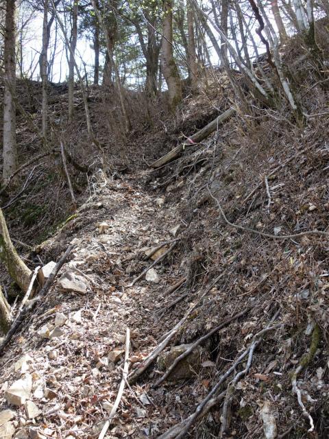 毛無山(地蔵峠コース)登山口コースガイド 地蔵峠直下の急登 【登山口ナビ】