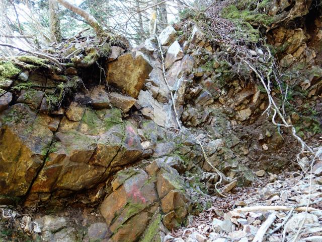 毛無山(地蔵峠コース)登山口コースガイド 支沢のロープ【登山口ナビ】