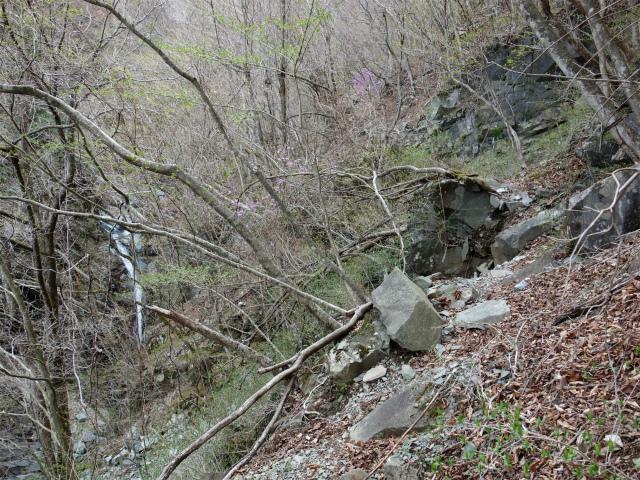 毛無山(地蔵峠コース)登山口コースガイド 金山沢の滝【登山口ナビ】