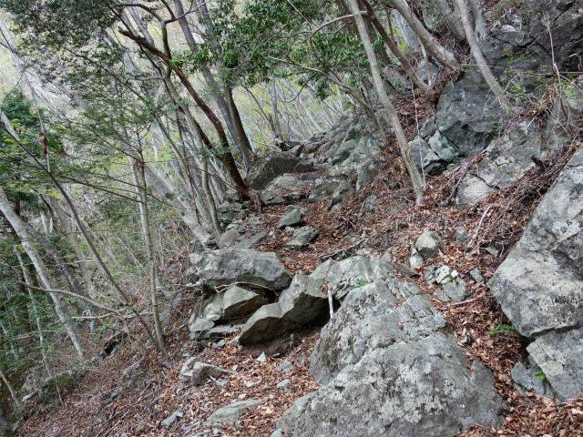 毛無山(地蔵峠コース)登山口コースガイド 高巻き道【登山口ナビ】