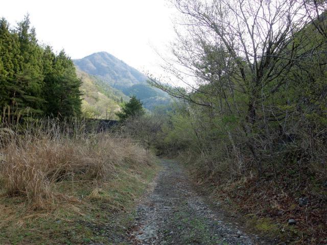 鬼ヶ岳(雪頭ヶ岳~鍵掛峠周回)登山口コースガイド 林道 【登山口ナビ】