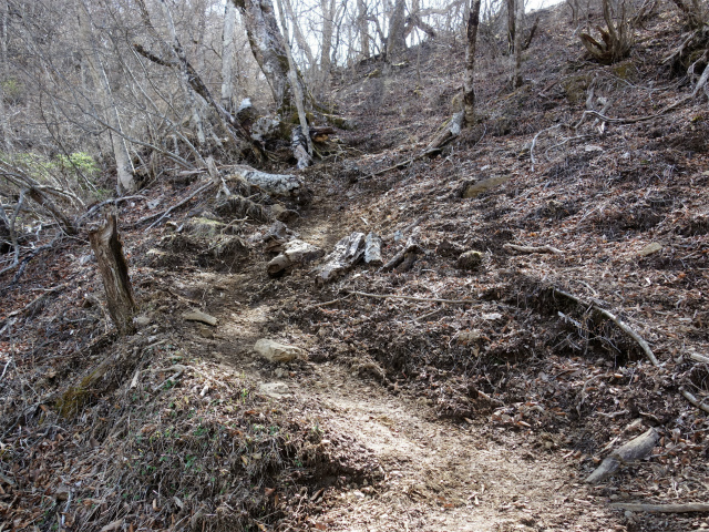 鬼ヶ岳(雪頭ヶ岳~鍵掛峠周回)登山口コースガイド 小ピーク【登山口ナビ】