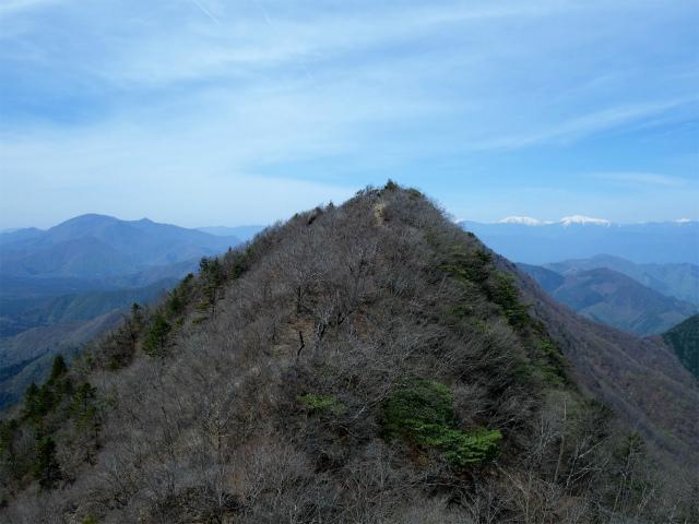 鬼ヶ岳(雪頭ヶ岳~鍵掛峠周回)登山口コースガイド 稜線のコブからの鍵掛【登山口ナビ】