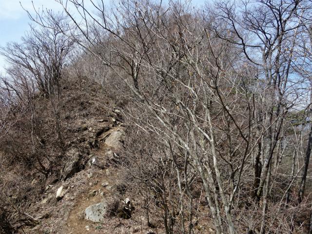 鬼ヶ岳(雪頭ヶ岳~鍵掛峠周回)登山口コースガイド 稜線のアップダウン【登山口ナビ】