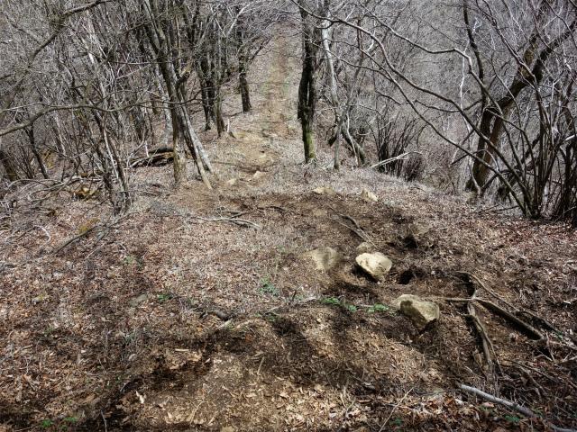 王岳(西湖根場~鍵掛峠周回)登山口コースガイド 鍵掛山頂からの下り【登山口ナビ】