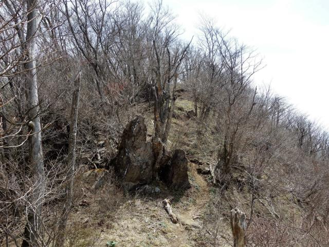 王岳(西湖根場~鍵掛峠周回)登山口コースガイド 鍵掛【登山口ナビ】
