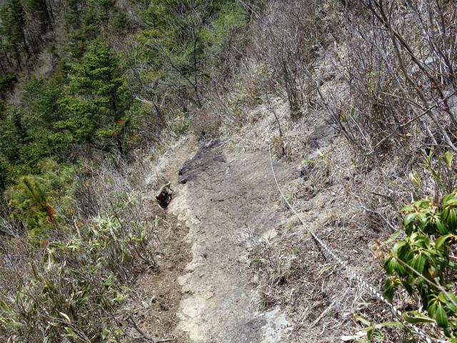 王岳(西湖根場~鍵掛峠周回)登山口コースガイド 急斜面のロープ【登山口ナビ】