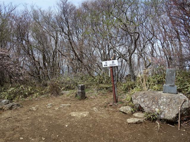 王岳(西湖根場~鍵掛峠周回)登山口コースガイド 王岳山頂【登山口ナビ】