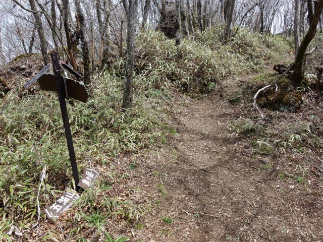 王岳(西湖根場~鍵掛峠周回)登山口コースガイド 稜線分岐【登山口ナビ】