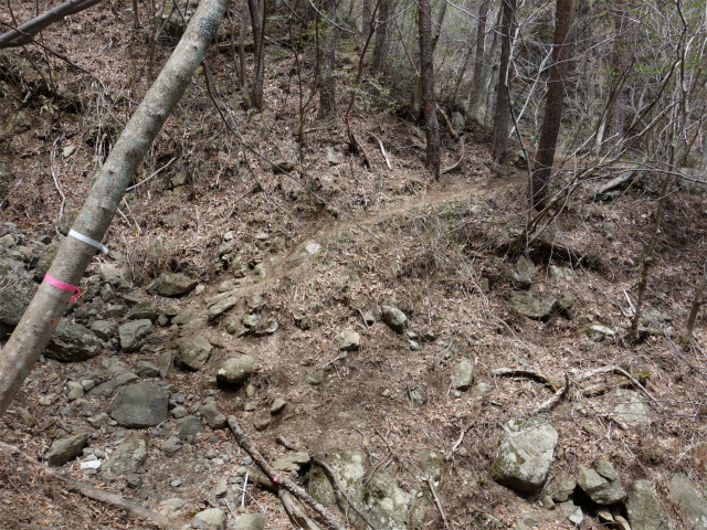 王岳(西湖根場~鍵掛峠周回)登山口コースガイド【登山口ナビ】