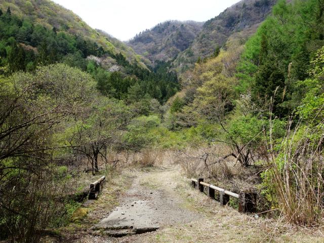 王岳(西湖根場~鍵掛峠周回)登山口コースガイド 治山工事道路【登山口ナビ】