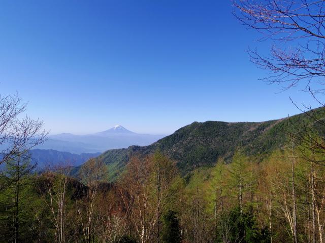 黒金山(桧尾~牛首のタル) 登山口コースガイド 富士山と乾徳山【登山口ナビ】