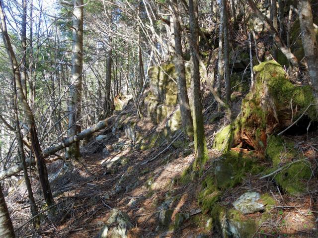 黒金山(桧尾~牛首のタル) 登山口コースガイド 牛首の南西面【登山口ナビ】