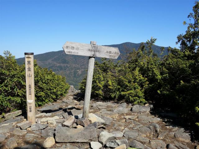 黒金山(桧尾~牛首のタル) 登山口コースガイド 黒金山山頂【登山口ナビ】