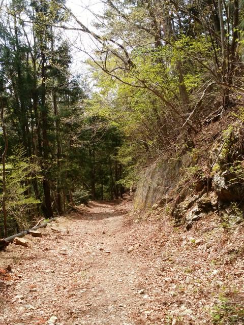 鬼ヶ岳(雪頭ヶ岳~鍵掛峠周回)登山口コースガイド 林道【登山口ナビ】