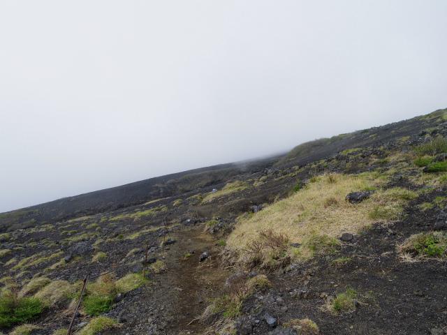 富士山(須走口)まぼろしの滝 登山口コースガイド ハイキングコース【登山口ナビ】
