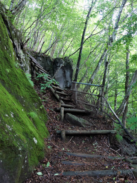 袈裟丸山(郡界尾根~後袈裟~奥袈裟)登山口コースガイド 梯子【登山口ナビ】