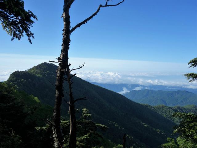 袈裟丸山(郡界尾根~後袈裟~奥袈裟)登山口コースガイド 前袈裟丸山と八反張【登山口ナビ】