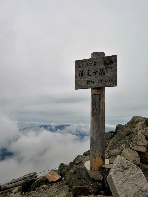 仙丈ヶ岳(北沢峠~小仙丈尾根)登山口コースガイド 仙丈ヶ岳山頂【登山口ナビ】