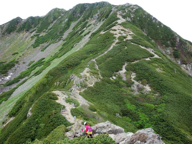 仙丈ヶ岳(北沢峠~小仙丈尾根)登山口コースガイド 2864mピークからの下り【登山口ナビ】