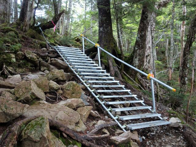 仙丈ヶ岳(北沢峠~小仙丈尾根)登山口コースガイド 梯子【登山口ナビ】