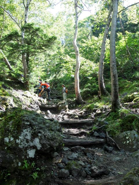 日光白根山(ロープウェイ山頂駅コース) 登山口コースガイド 階段の急登【登山口ナビ】