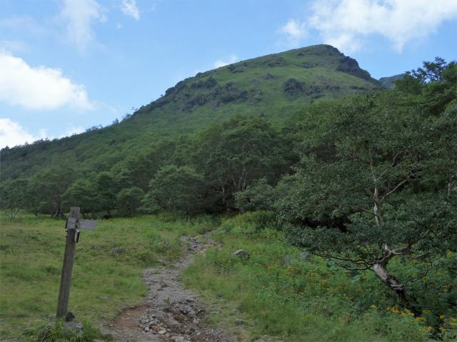 日光白根山(七色平~五色沼) 登山口コースガイド【登山口ナビ】