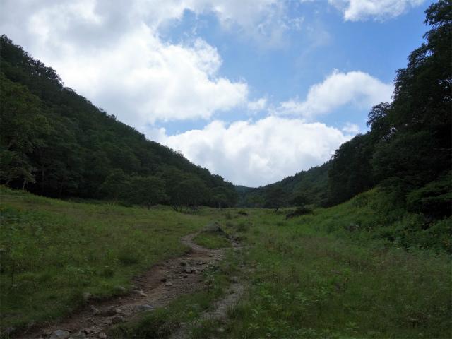日光白根山(七色平~五色沼) 登山口コースガイド 白根隠山鞍部【登山口ナビ】