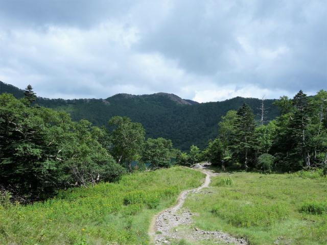 日光白根山(七色平~五色沼) 登山口コースガイド 前白根山【登山口ナビ】