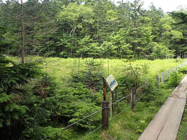 日光白根山(七色平~五色沼) 登山口コースガイド 七色平【登山口ナビ】