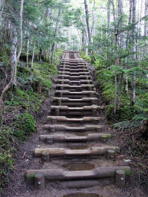 国師ヶ岳・北奥千丈岳(大弛峠~夢の庭園) 登山口コースガイド 階段【登山口ナビ】
