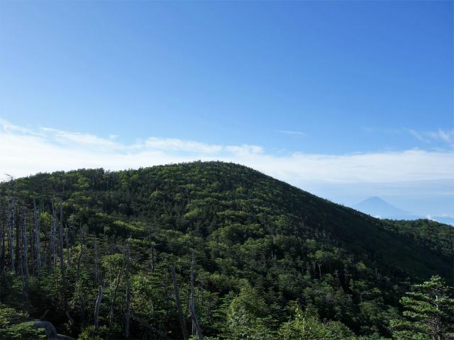 国師ヶ岳・北奥千丈岳(大弛峠~夢の庭園) 登山口コースガイド 前国師岳からの富士山【登山口ナビ】