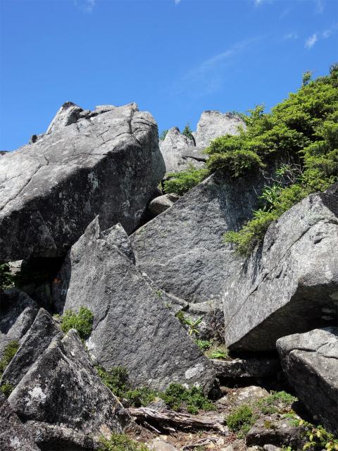 国師ヶ岳(天狗尾根) 登山口コースガイド 天狗岩直下の急登【登山口ナビ】
