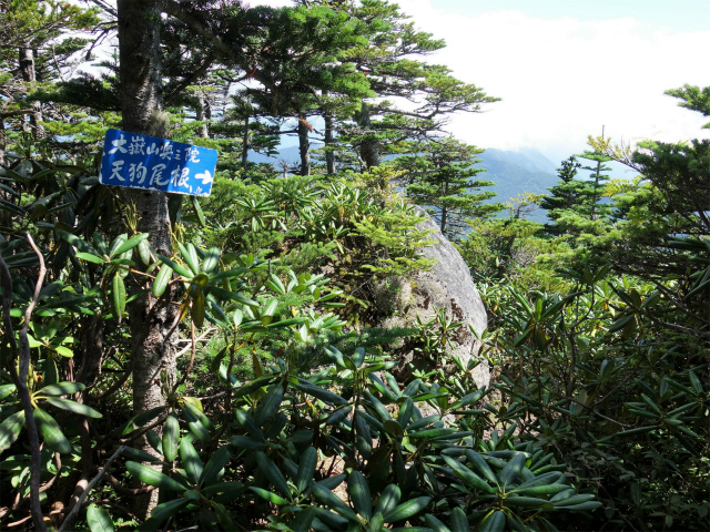 国師ヶ岳(天狗尾根) 登山口コースガイド 大嶽山奥之院の指導標【登山口ナビ】