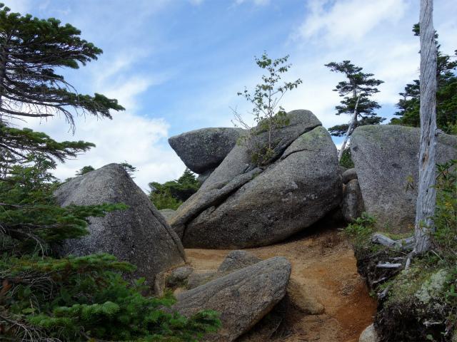 国師ヶ岳・北奥千丈岳(大弛峠~夢の庭園) 登山口コースガイド 夢の庭園の花崗岩【登山口ナビ】