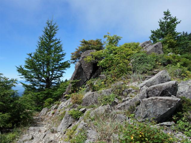 四阿山(鳥居林道口~上州古道)登山口コースガイド 露岩【登山口ナビ】