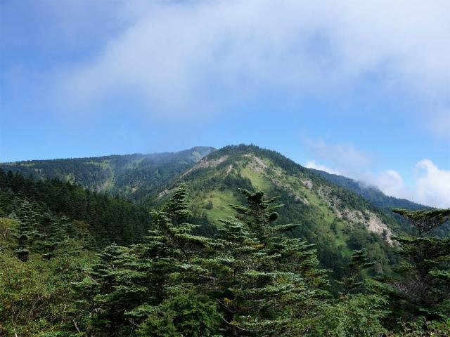 四阿山(鳥居林道口~上州古道)登山口コースガイド 露岩からの四阿山【登山口ナビ】