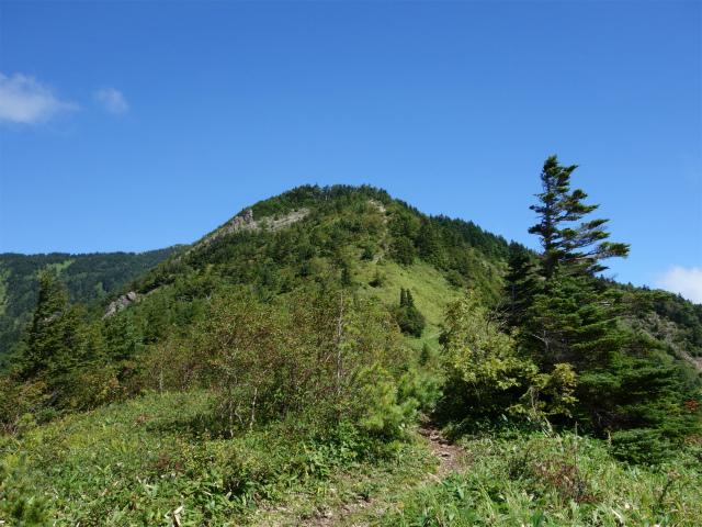 四阿山(鳥居林道口~上州古道)登山口コースガイド 手前のピーク【登山口ナビ】