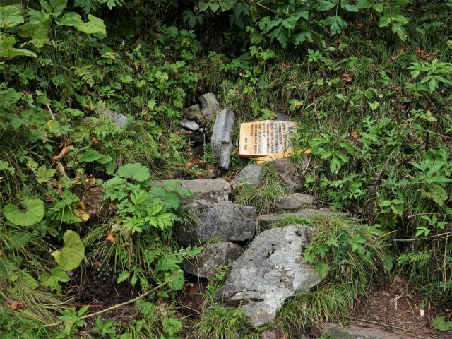 四阿山(鳥居林道口~上州古道)登山口コースガイド 嬬恋清水【登山口ナビ】