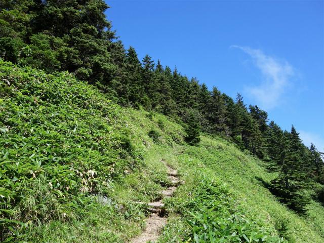 四阿山(鳥居林道口~上州古道)登山口コースガイド 急坂【登山口ナビ】