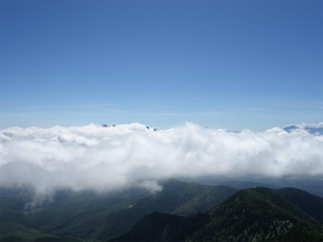 四阿山(鳥居林道口~上州古道)登山口コースガイド 四阿山山頂からの浅間山【登山口ナビ】