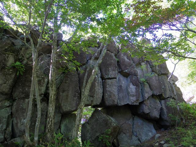 四阿山(鳥居林道口~上州古道)登山口コースガイド 的岩【登山口ナビ】