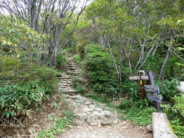 那須岳(朝日岳~姥ヶ平) 登山口コースガイド 階段の登山道【登山口ナビ】