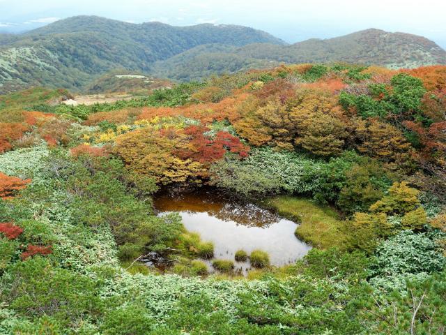 那須岳(朝日岳~姥ヶ平) 登山口コースガイド 池塘【登山口ナビ】