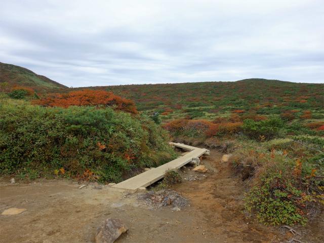 那須岳(朝日岳~姥ヶ平) 登山口コースガイド 木桟道【登山口ナビ】
